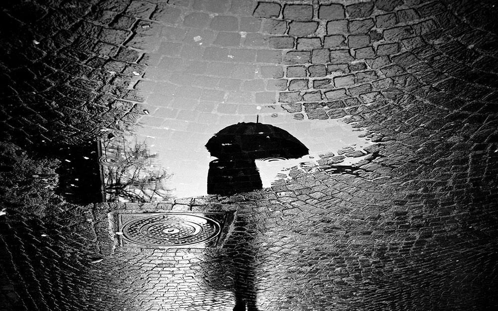 باران از مجموعه ی اشعار محمد علی بهمنی