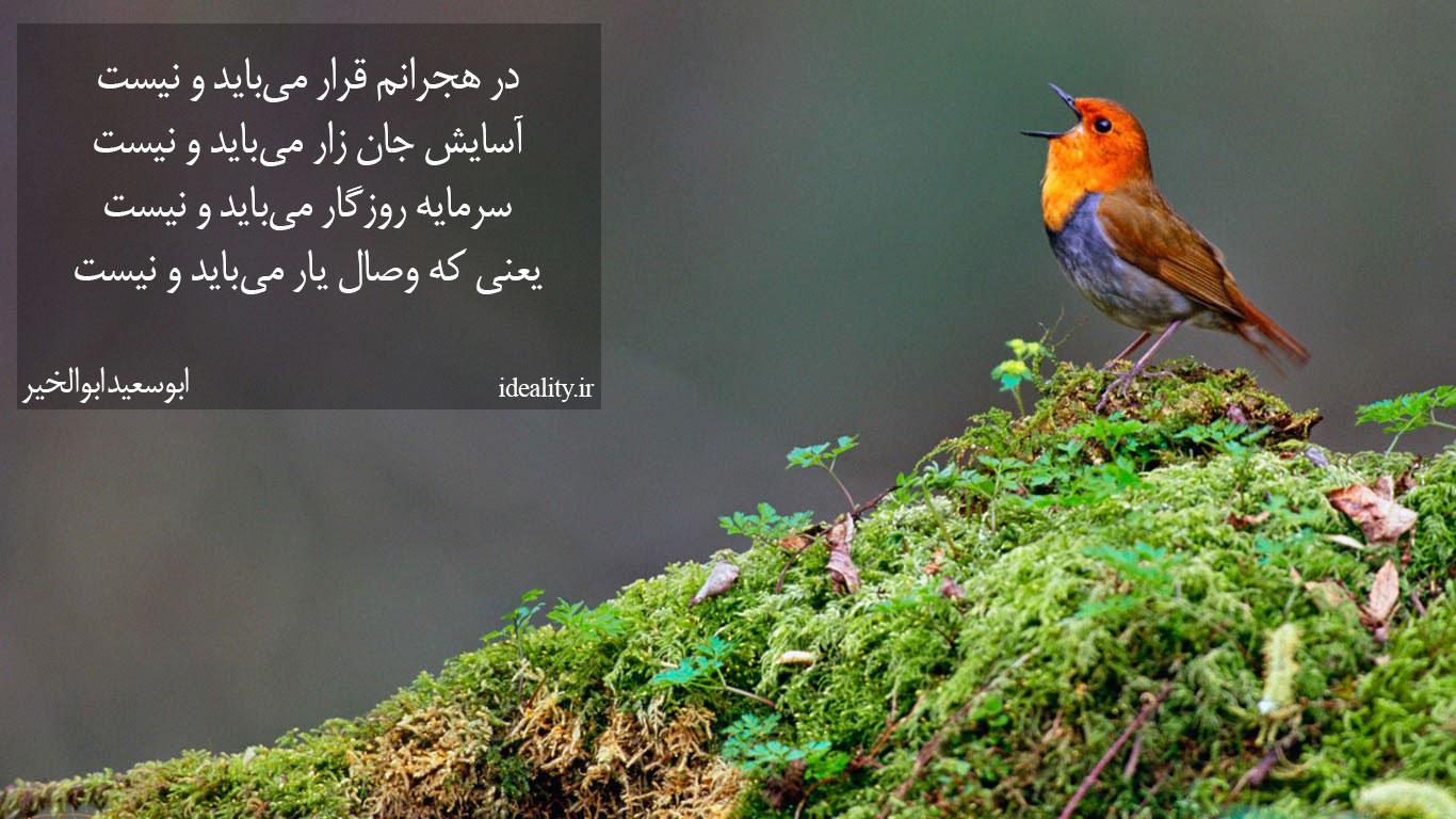 یعنی که وصال یار میباید و نیست؛ مجموعه رباعیاتی از ابوسعید ابوالخیر