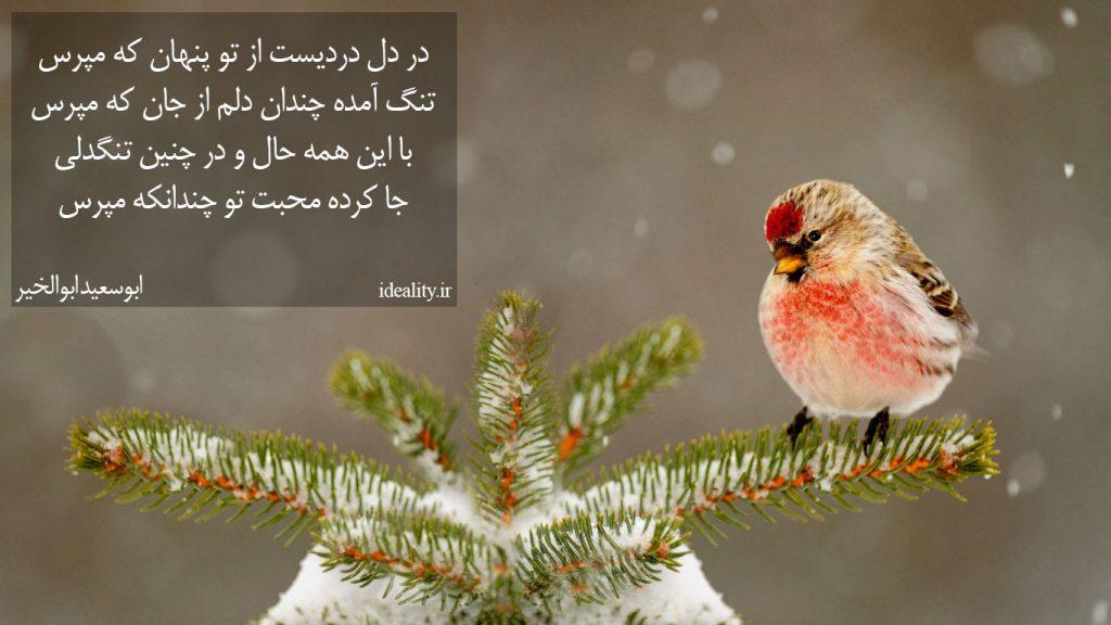 در دل دردیست از تو پنهان که مپرس