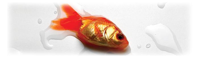 پیغام ماهیها؛ سروده ای از سهراب سپهری (مجموعه حجم سبز)