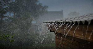 باران میبارد؛ یادمان باشد که شاکر باشیم